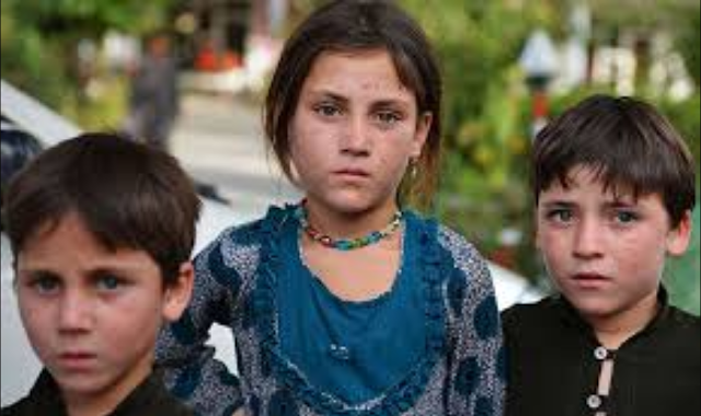 Latest Update Of Schools From Waziristan Education