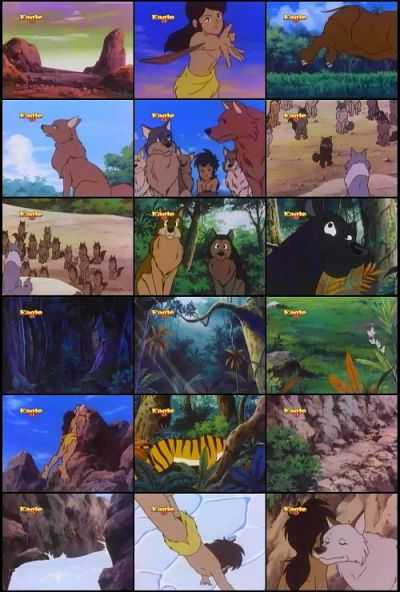 The Jungle Book Cartoon Full Hindi All Episodes Downlooad Mowgli (1 to 52)