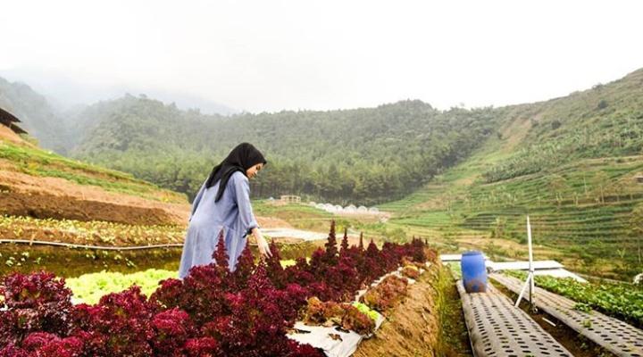 Lembah Indah Malang Harga Tiket Masuk Dan Alamat Lokasi
