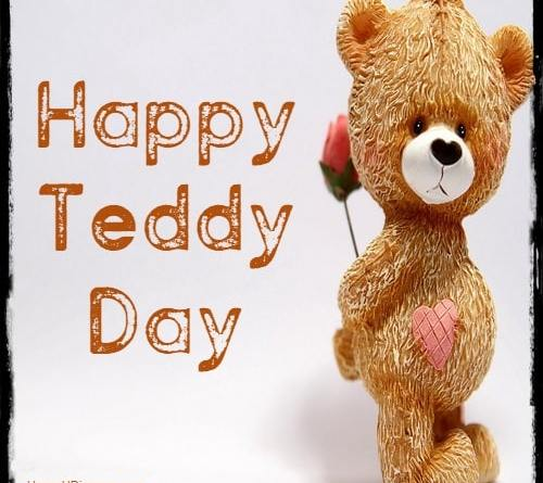 teddy day friend