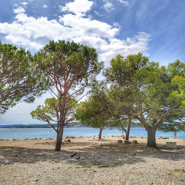 plaże w Crikvenicy, żwir, zatoczki, kolor morza