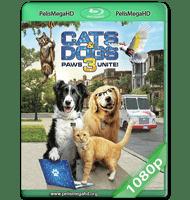 COMO PERROS Y GATOS 3: PATAS UNIDAS (2020) WEB-DL 1080P HD MKV ESPAÑOL LATINO