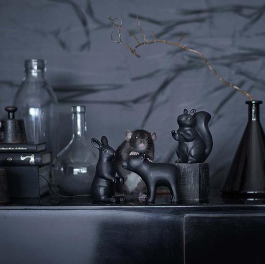 IKEA hösten 2016 - Rörd dekationsdjuren ekorren, björnen och kaninen | www.var-dags-rum.se