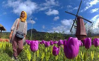Deretan Tempat Wisata di Purwokerto yang Wajib Dikunjungi