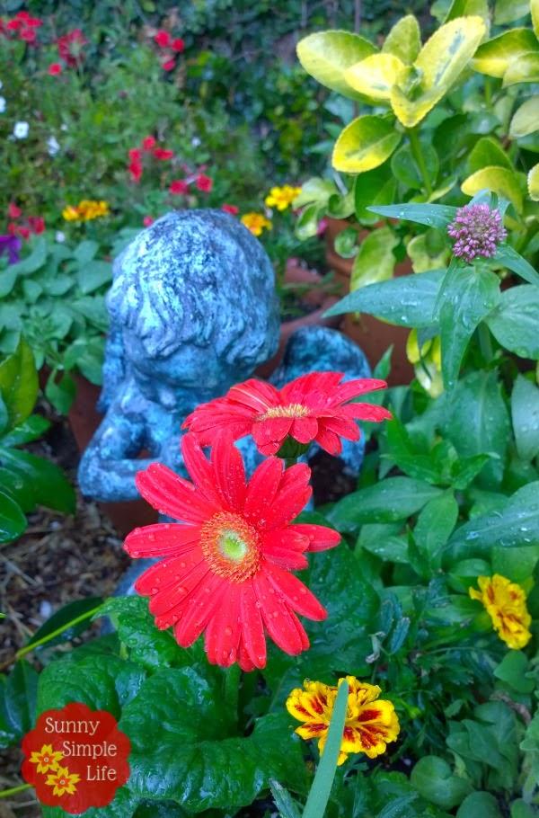 angel in garden, #cottagegarden