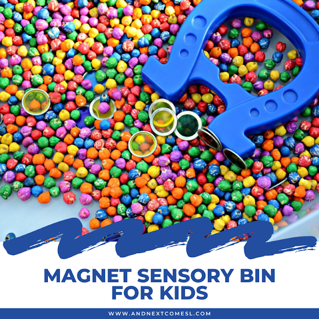 Magnet sensory bin with rainbow dyed chickpeas
