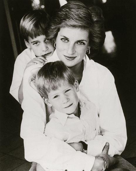 Princesa diana com os filhos