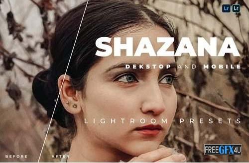 Shazana Lightroom Preset