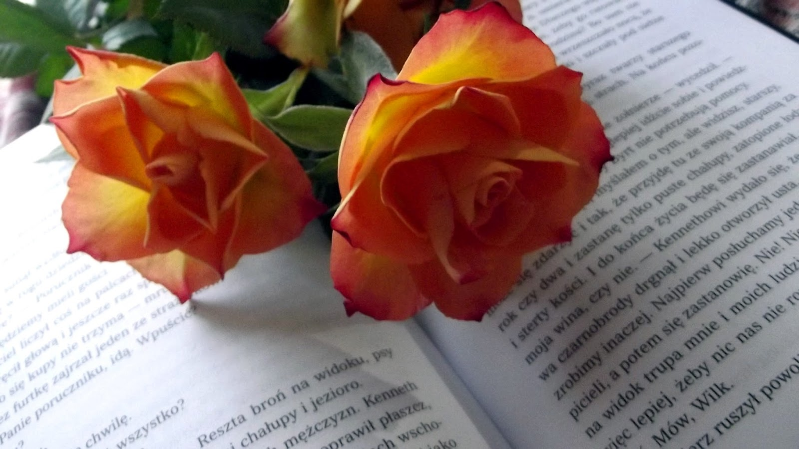 Książkowy marzec, czyli podsumowanie miesiąca