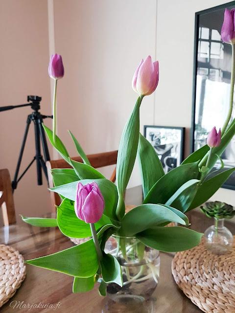 tulppani  kukka flower tulips sisustus rustiikki skandinaavinen