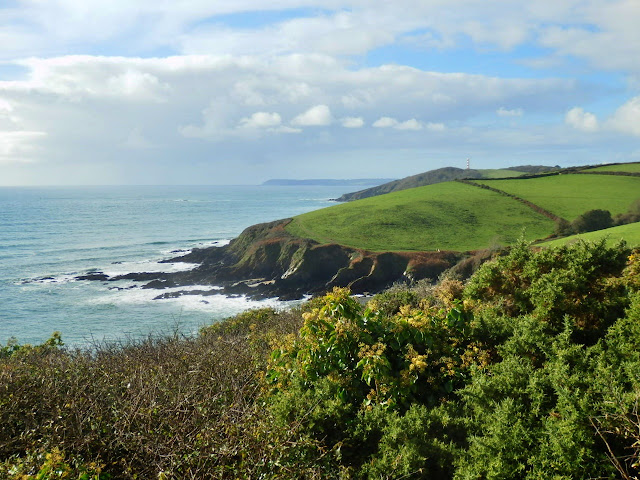 Walking from Fowey to Gribbin Head, Cornwall - beautiful views