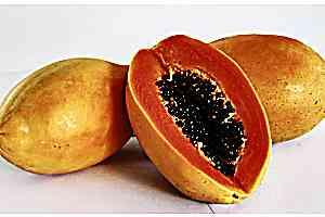 Papaya: Eliminate flatulence with the help of 16 foods