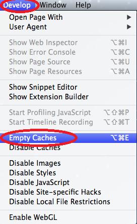 Empty Cache