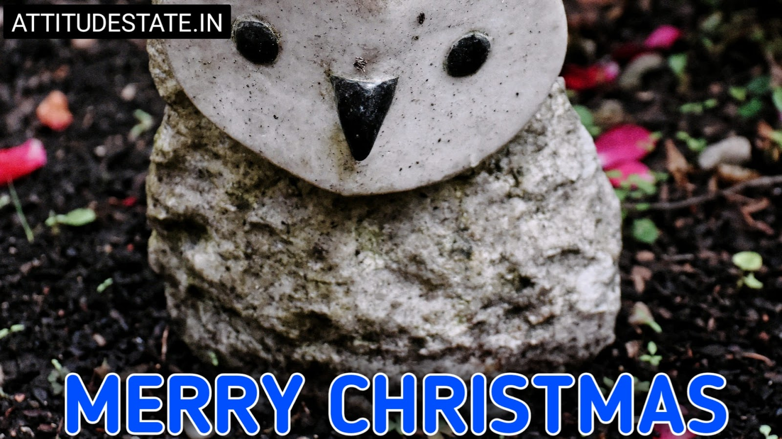 funny merry christmas pictures free