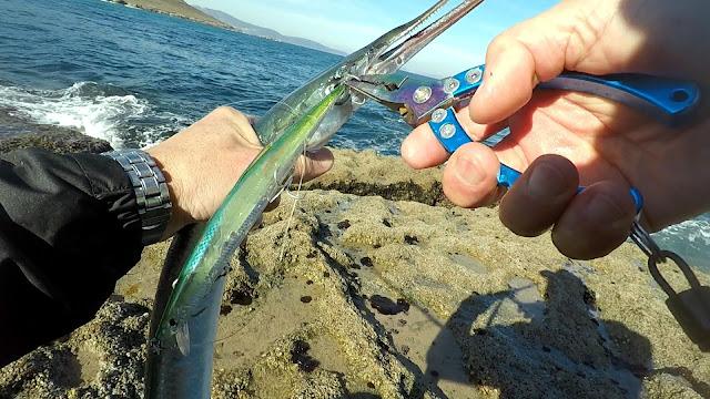 GUDARI - La pesca del pez aguja con señuelos artificiales