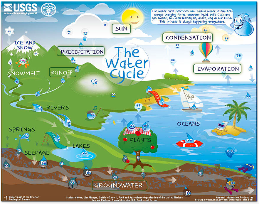 Mrs liportos 3rd grade interactive water cycle diagram theres even different levels of the cycle for students a beginner intermediate and advanced water cycle chart usgs interactive water cycle ccuart Gallery