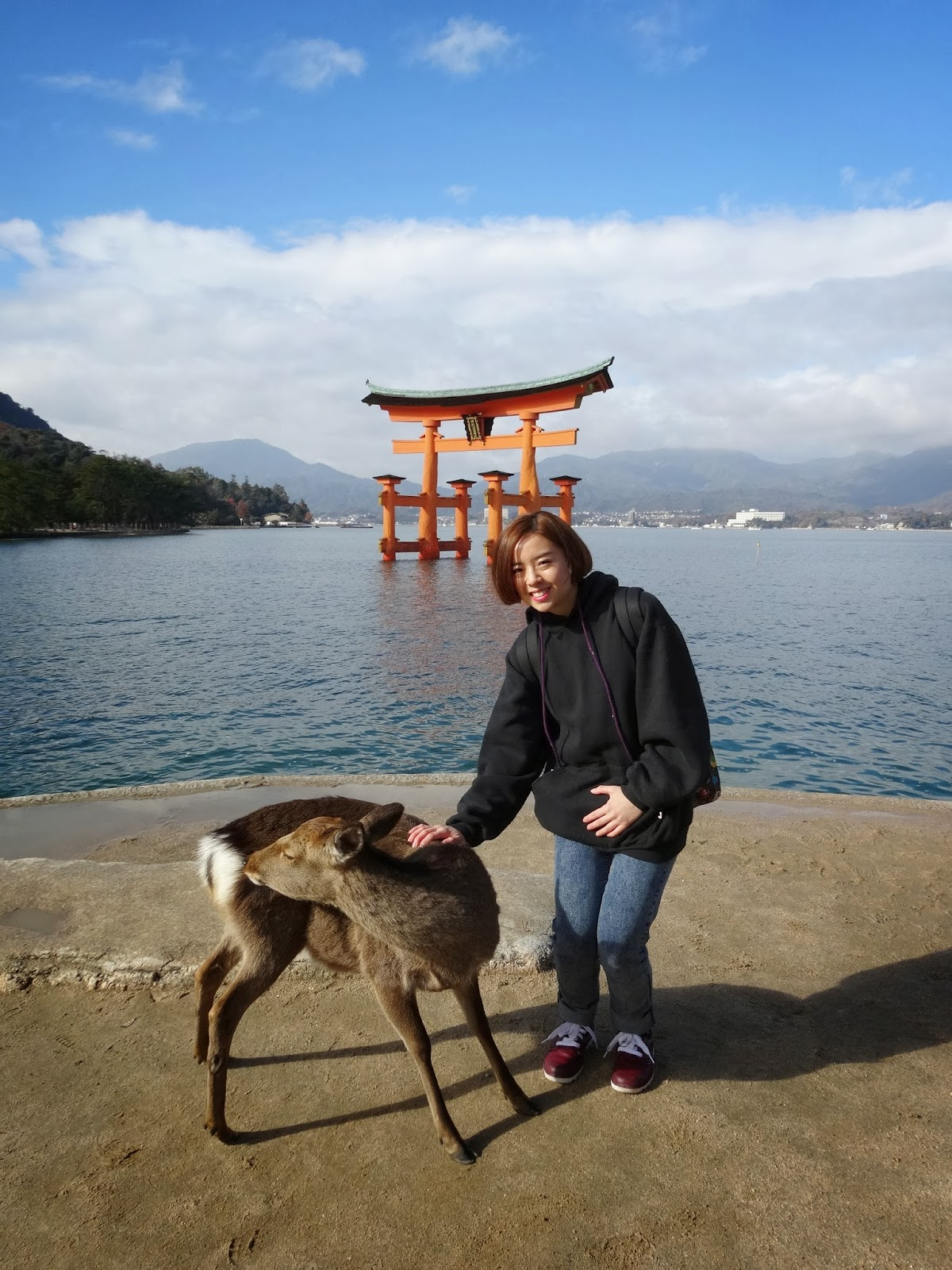 Girl posing with deer in front of torii gates on Miyajima Island