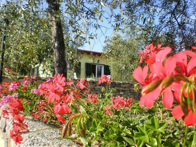 Agriturismo a Santo Stefano al Mare - Strutture ricettive in Liguria