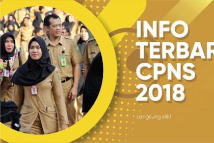 Info Terbaru | Tidak mencapai Passing Grade Masih Bisa Jadi CPNS