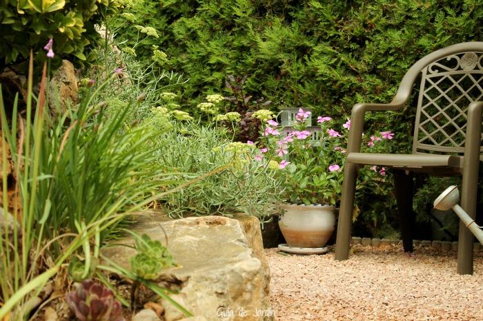 Plantas y jardiner a sostenible mi experiencia guia de for Plantas para mi jardin