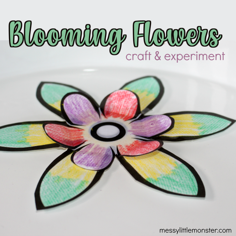 Blooming paper flowers craft and experiment