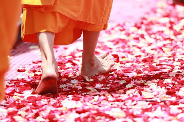 Festa delle Luci Thailandia