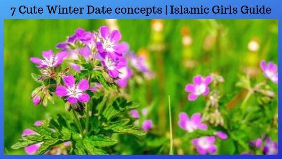 7 Cute Winter Date concepts | Islamic Girls Guide