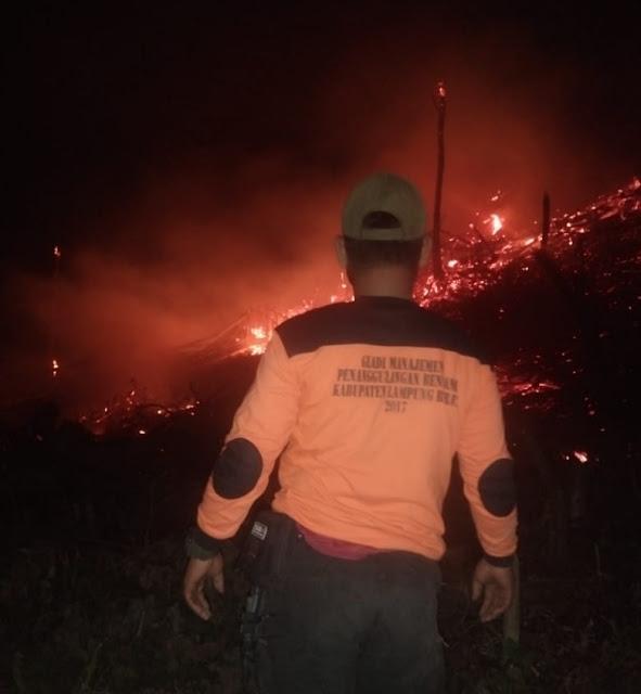 Bakar Lahan untuk Berkebun, Api Meluas Hingga Satu Hektar