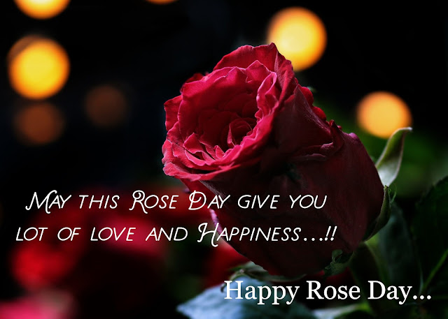 Happy Rose Day  for wife