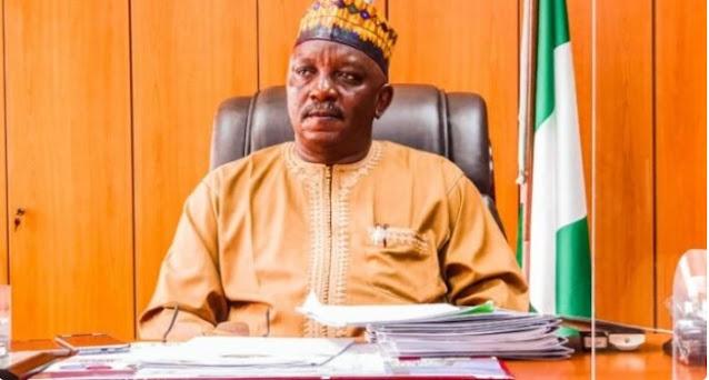 Senators uncover '20 proposed electricity projects' in minister's LGA