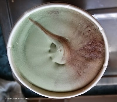 Oppo Mint ice cream with spirulina