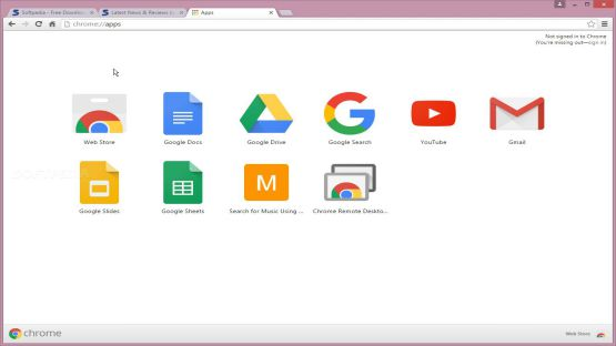 Google Chrome Screenshot 1