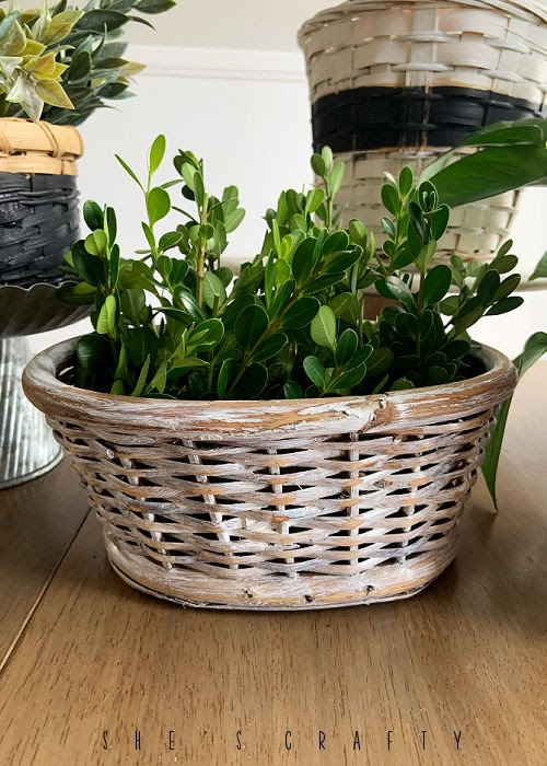 White basket planter from thrift store basket