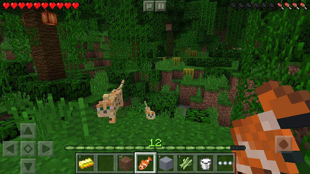 Minecraft: Pocket Edition 0.17.0.1 APK MOD For Android