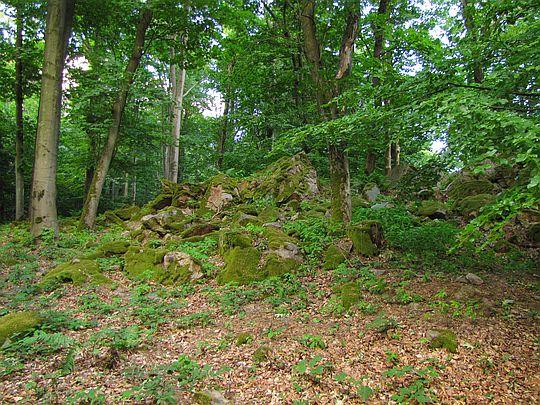 Góra Jeleniowska (532 m n.p.m.).