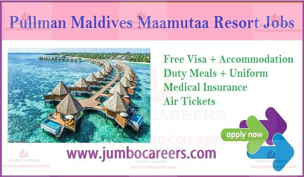 Maldives jobs with free visa and air ticket,
