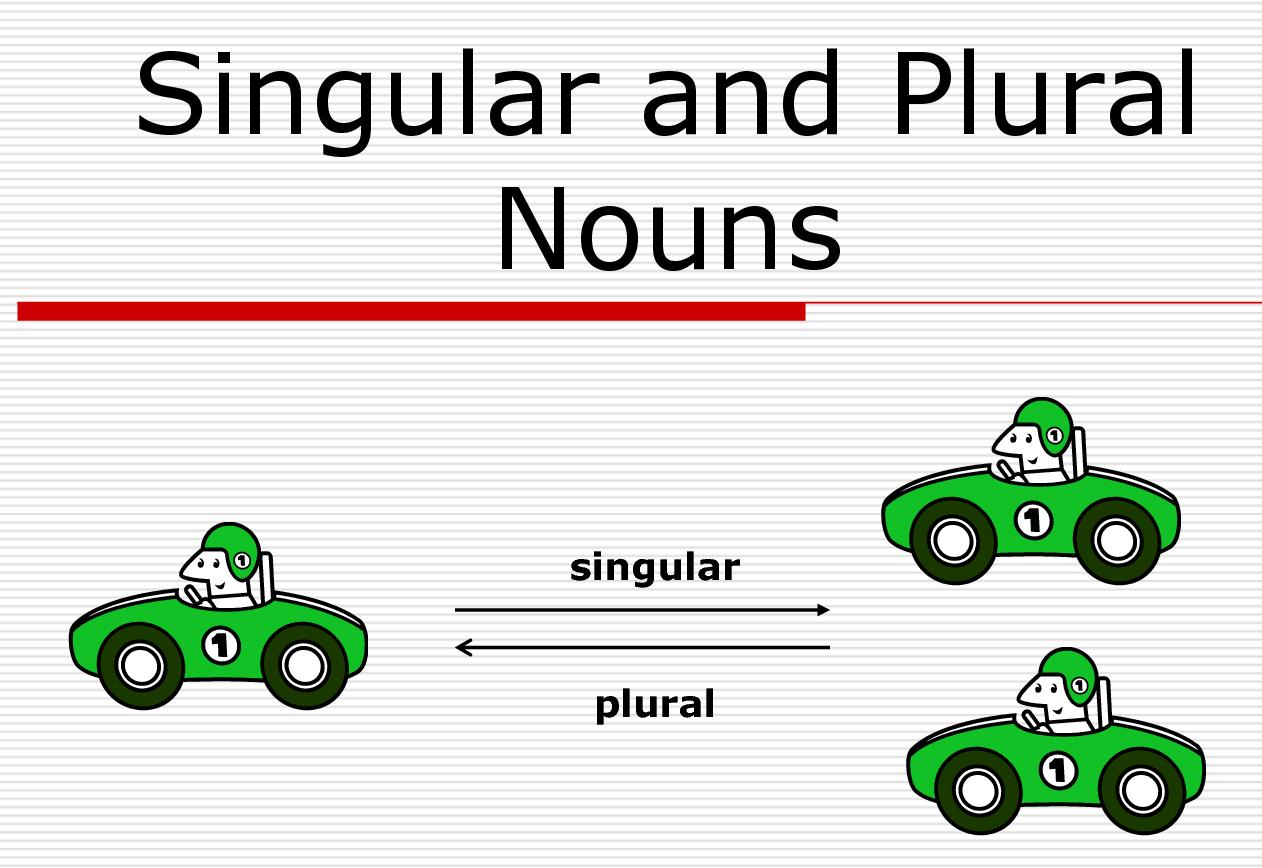 Lesson Plan Of Singular And Plural Nouns Regular