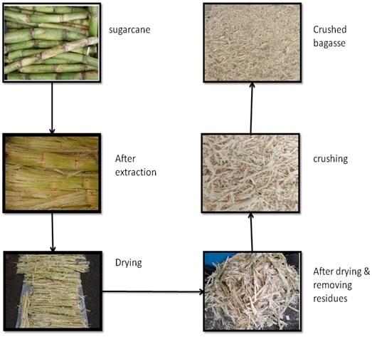 Bagasse fiber process flowchart