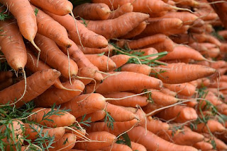 Healthy fresh Carrots