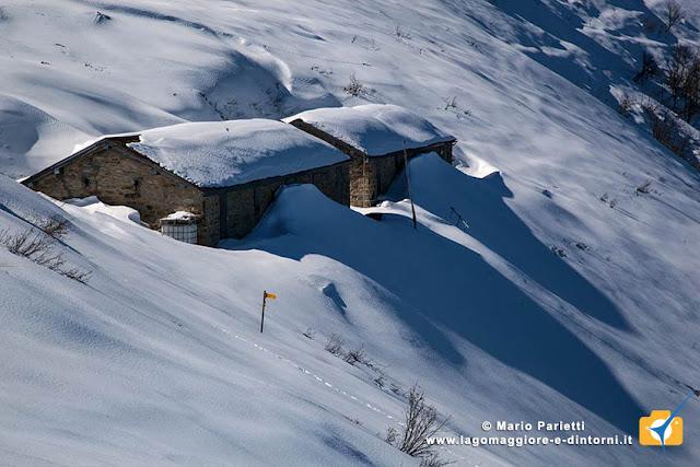 Monte Gambarogno