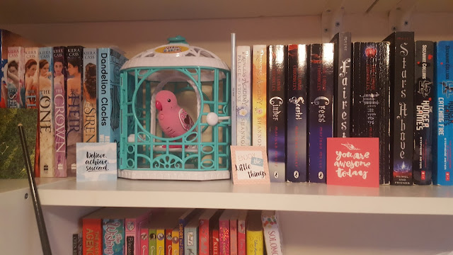 One of Top Ender's many book shelves filled with YA Fiction