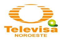 Televisa Vallevision