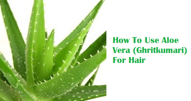 How To Use Aloe Vera (Ghritkumari) For Hair