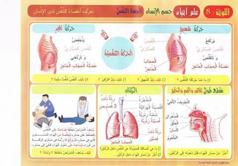 14 - ملخص دروس  و معلقات ترسيخية الايقاظ س5