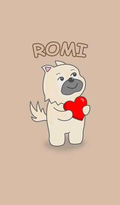 Romi Cute Dog