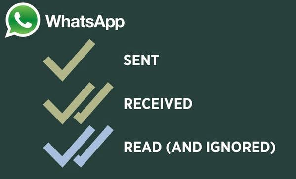 What does the blue tick on WhatsApp mean?