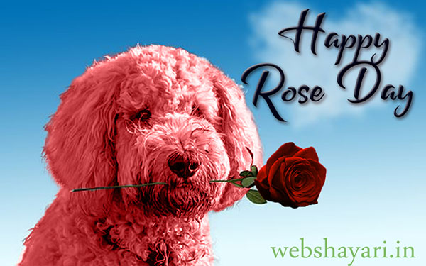 happy rose day new image for friend