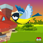 Games4King Cute Bird Esca…