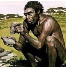 gambar manusia purba meganthropus
