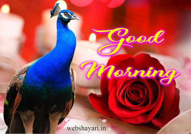 PYARA GOOD MORNING  PHOTO IMAGE PICS WALLPAPER